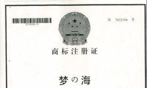 梦&海商标注册证
