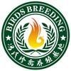 访问江门冯氏珍禽养殖场  的企业空间