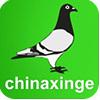 访问深圳中信网的企业空间