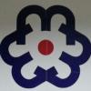 访问东莞市明盛印刷材料公司 的企业空间