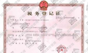 四川寰宇天涯国际旅行社有限公司税务登记证(地税)