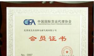 中国国际货运代理协会
