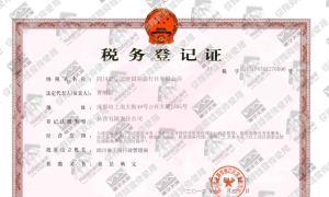 四川寰宇天涯国际旅行社有限公司税务登记证(国税)