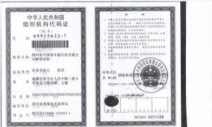 组织机构代码证1