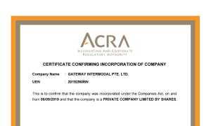国脉多式联运有限公司(新加坡)-注册证书