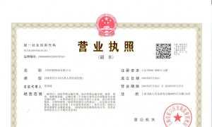 上海国脉物流有限公司-营业执照(202005版)