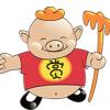 猪八戒宜创小额贷款有限公司