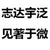 闪联朝华(泛微新疆大区)